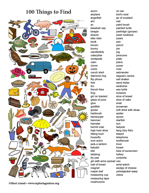 100 Things to Find (Color)