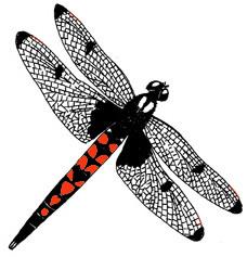 Dragonfly (Eliza Skimmer)
