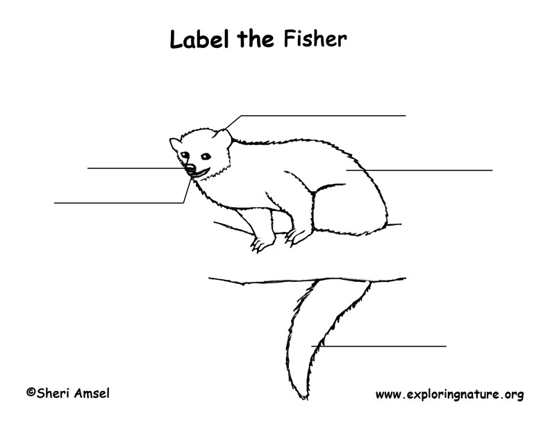 Fisher Labeling Page