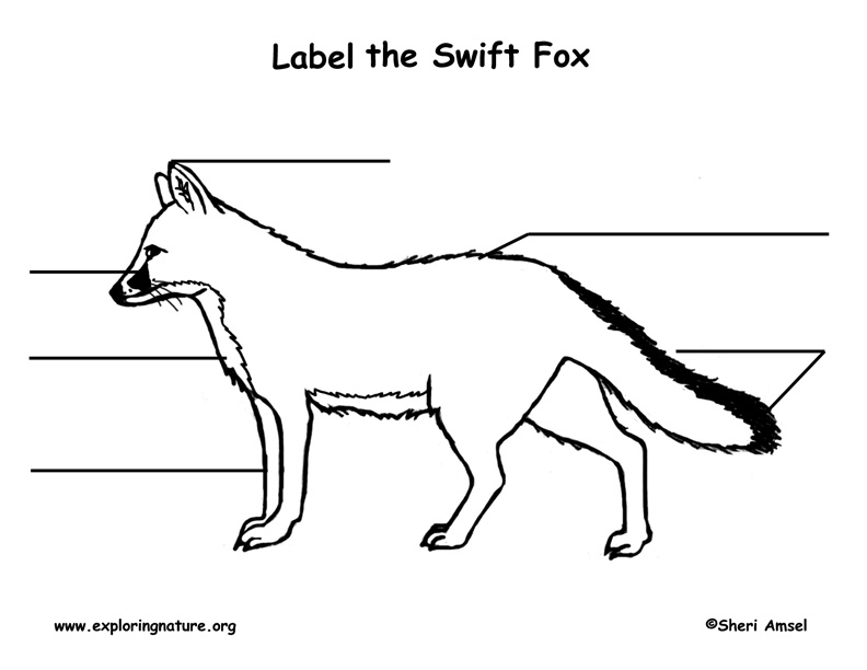 Fox (Swift) Labeling Page