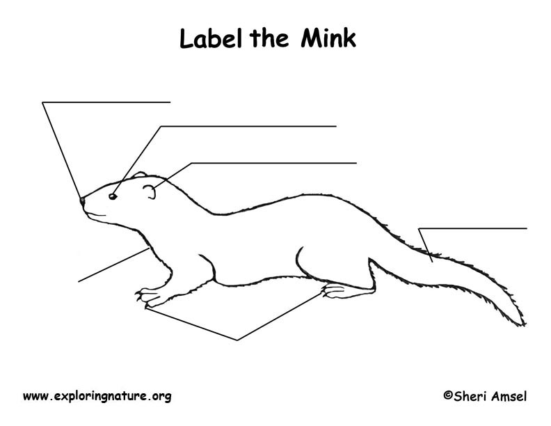 Mink  Labeling Page
