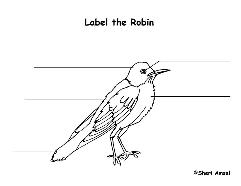 Robin Labeling Page