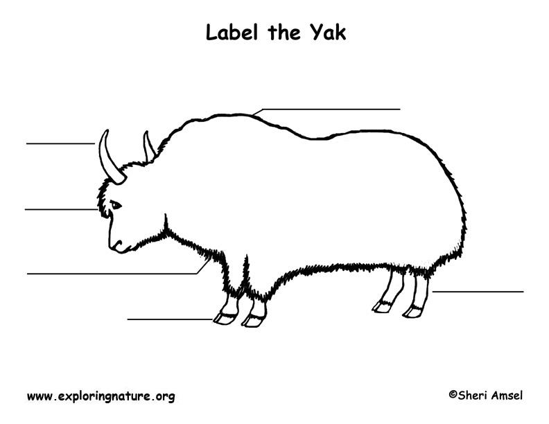 Yak Labeling Page