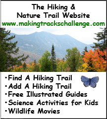 Visit MakingTracksChallenge.com