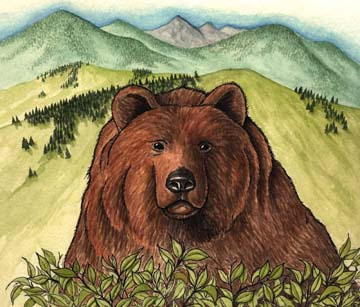 Bear (Grizzly)