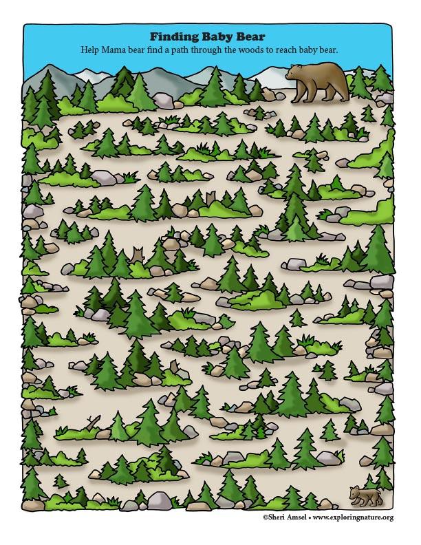 Finding Baby Bear Maze
