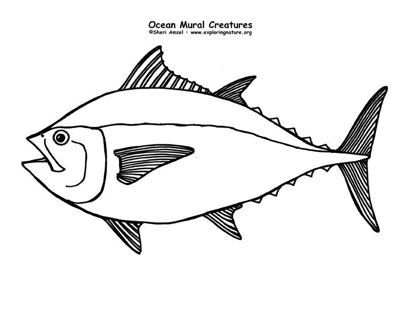 Ocean Habitat Mural