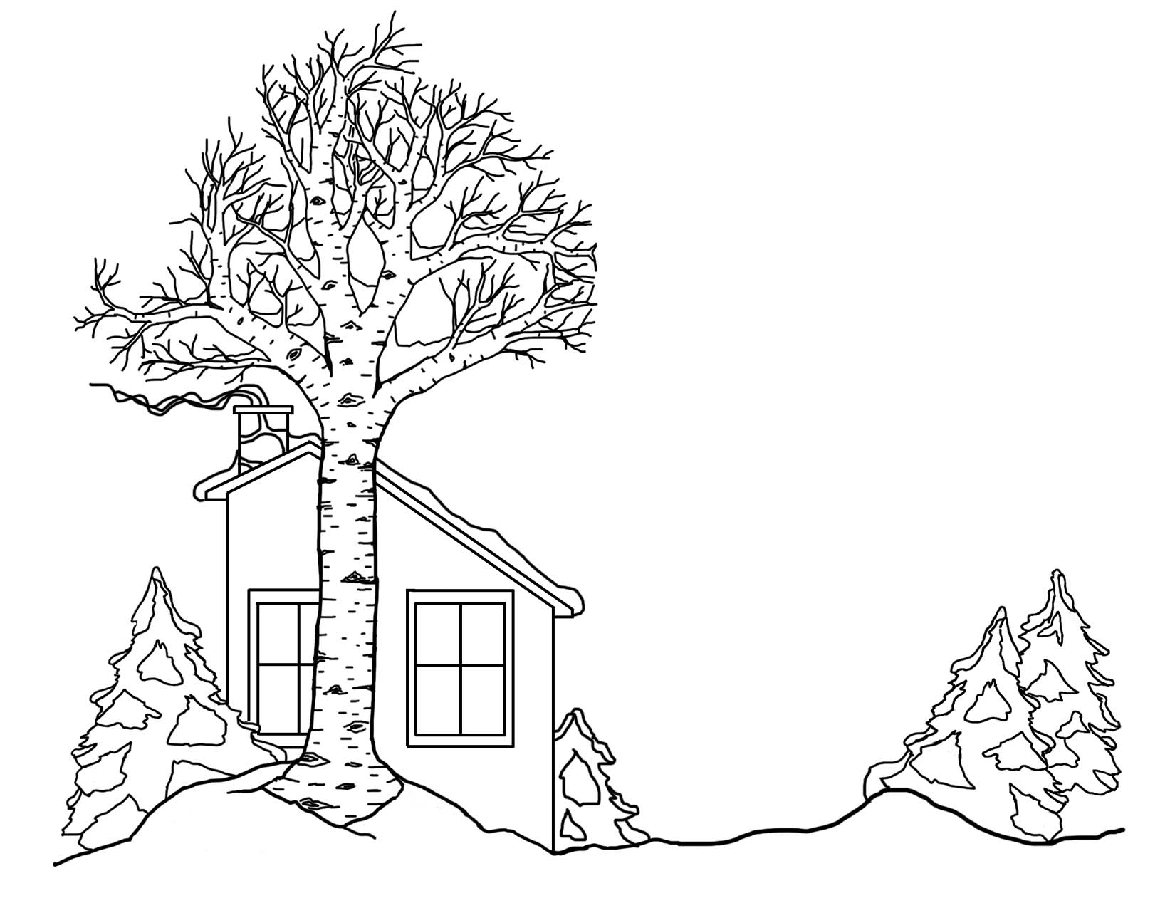 Winter House and trees