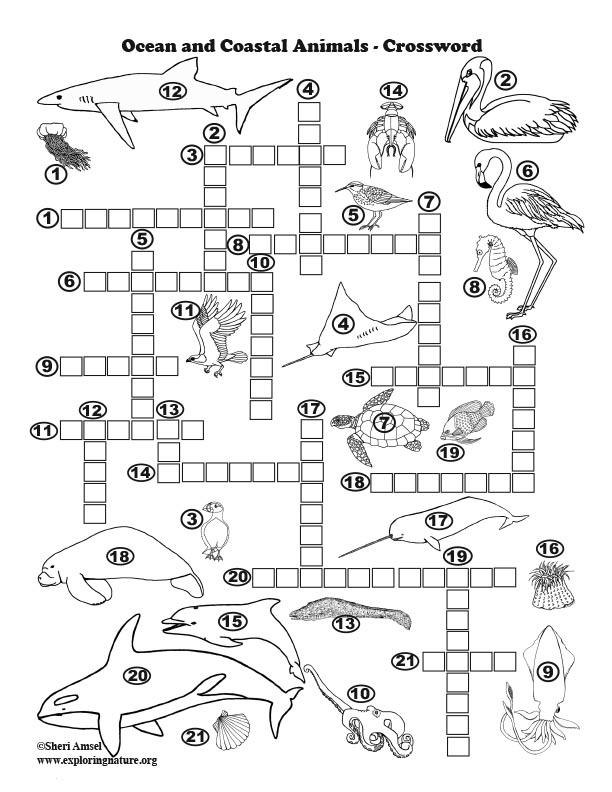 Ocean and Coastal Animals Crossword