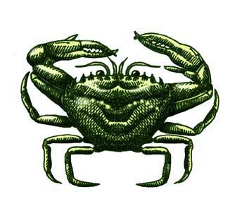 Crab (Green)