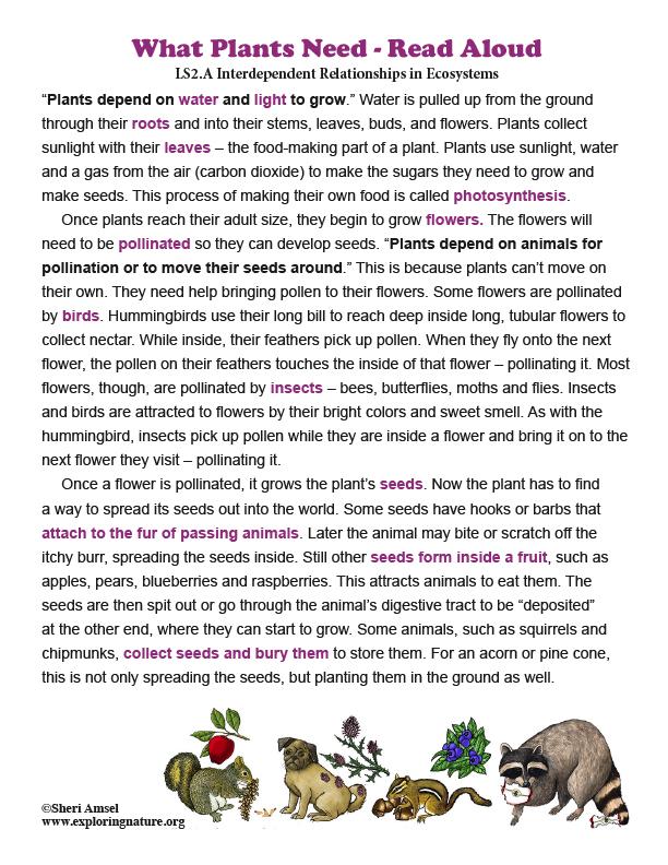 What Plants Need - Read Aloud (K-2)