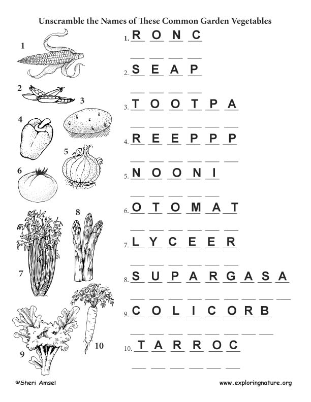 Vegetable Name Unscramble