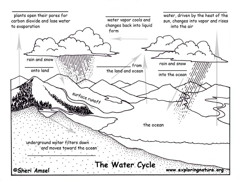 Worksheets Water Cycle Worksheet Pdf water cycle fill in the blank quiz