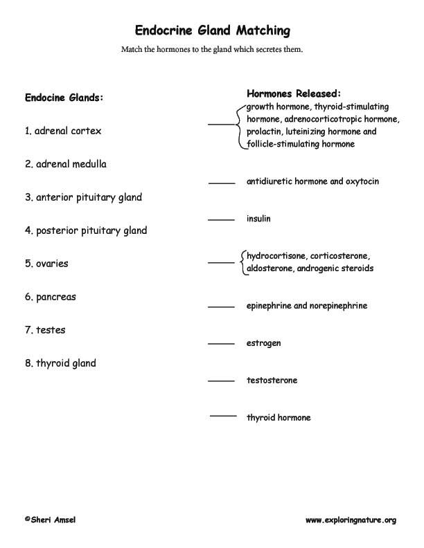 human biology test bank zambak pdf