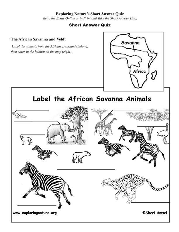 African Savanna - Read and React Quiz