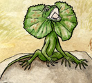Lizard (Frilled)