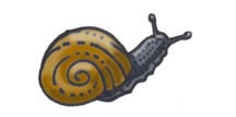 Snail (Giant Land)