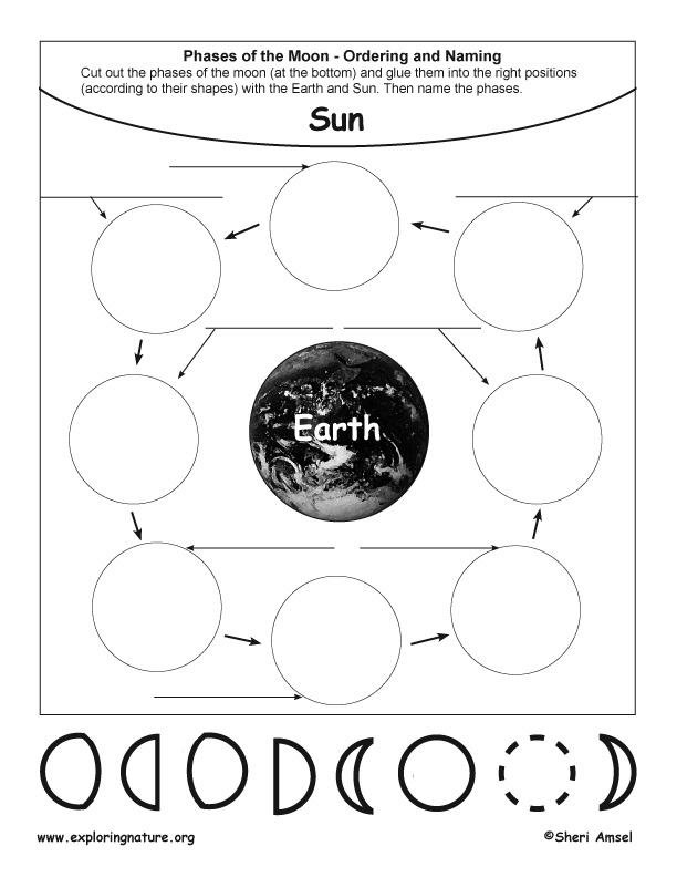 Phases of the Moon - Cut, Paste, Name