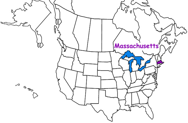 Massachusetts Habitats Mammals Birds Amphibians Reptiles