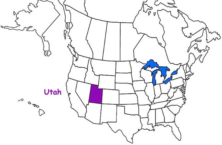 utah Habitats, Mammals, Birds, Amphibians and Reptiles