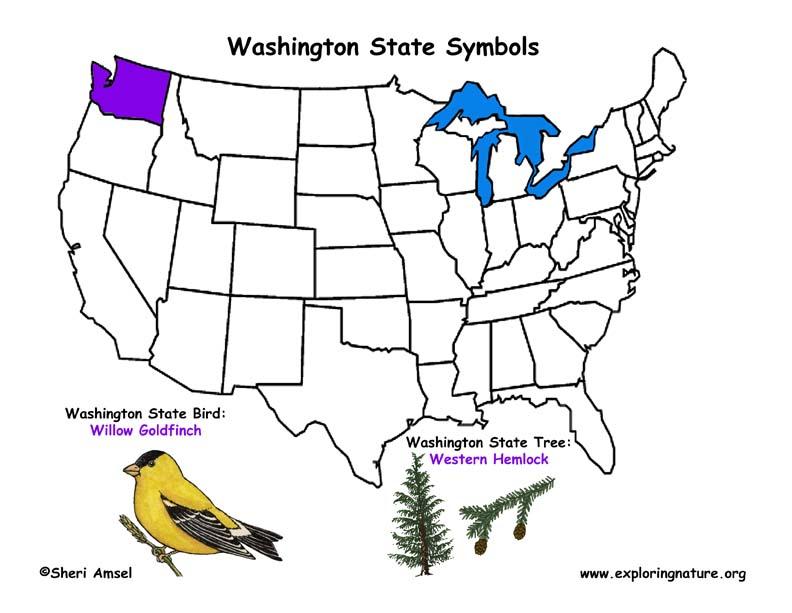 Washington Habitats Mammals Birds Amphibians Reptiles