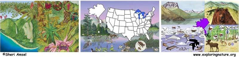 State Animals and Habitats