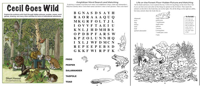 Cecil Activity Book