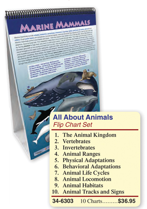 All About Animals Flip Chart Set