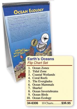 Ocean Flipchart