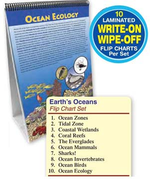 Oceans Flip Chart