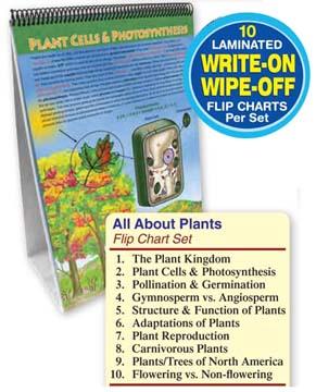 All About Plants Flip Chart Set