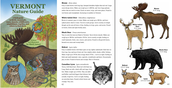 Vermont Nature Guide