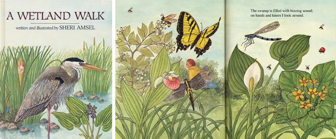 Wetland Walk Book