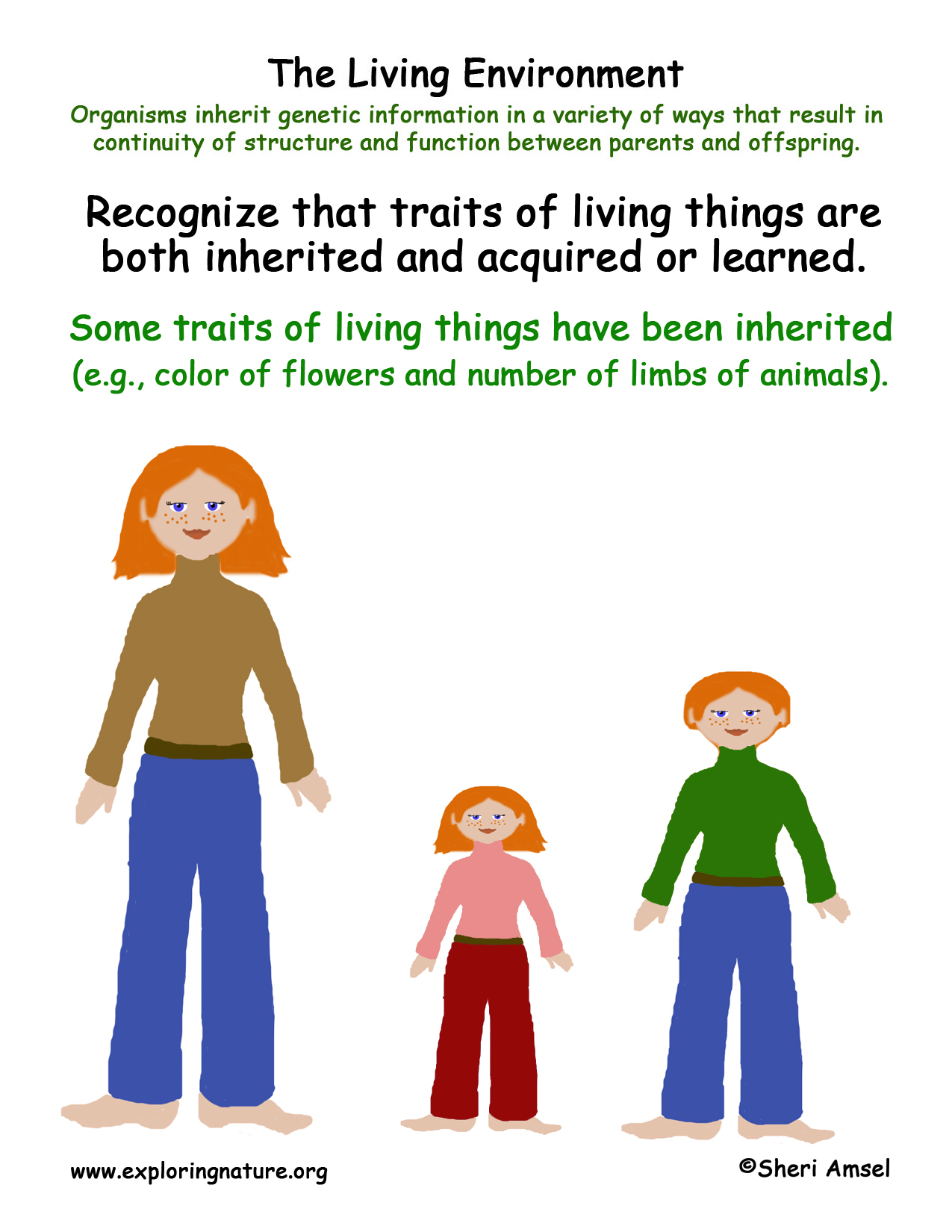 Living Environment Inherited Traits