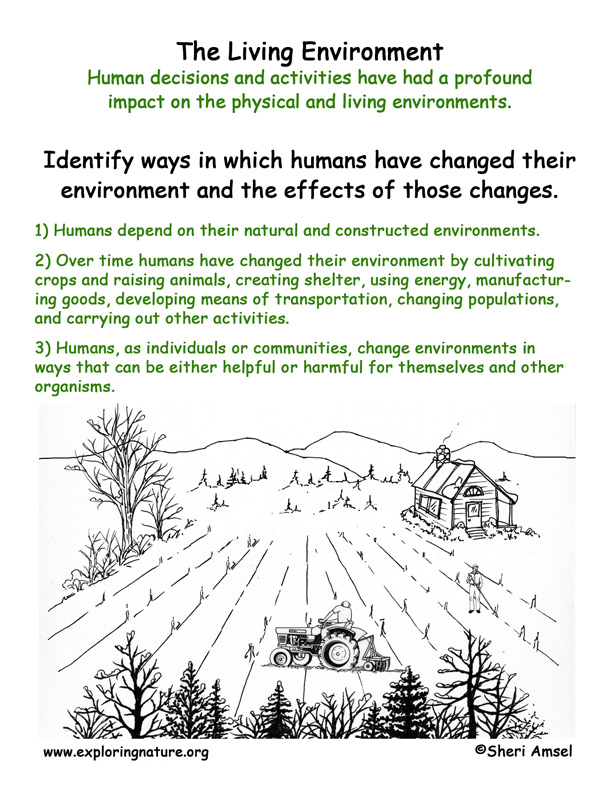 <b>Living Environment: Humans & the Environment</b>