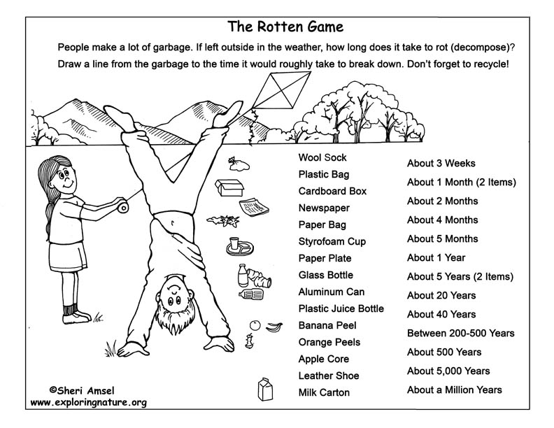 Rotten Game - How Long Does it Take to Decompose?