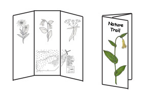 Making a Nature Trail Guide