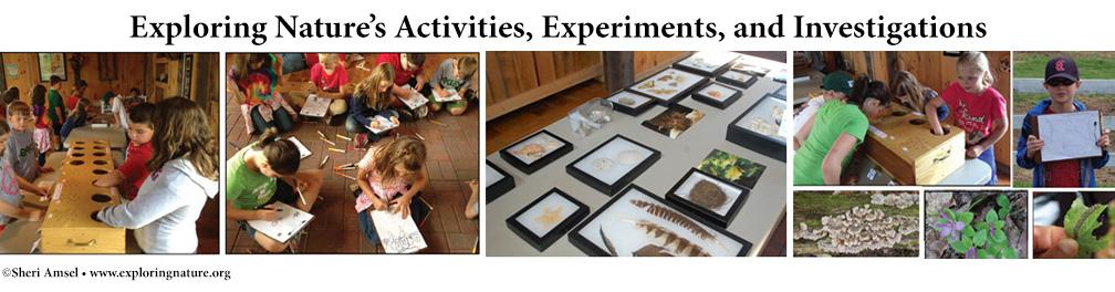 Science Activities index, classroom science activities,