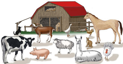 Which Animals Belongs on a Farm? Farm Animals Activities