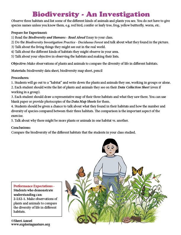 Biodiversity - An Investigation