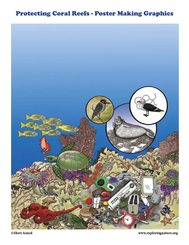 Protecting Coral Reefs - Poster Making