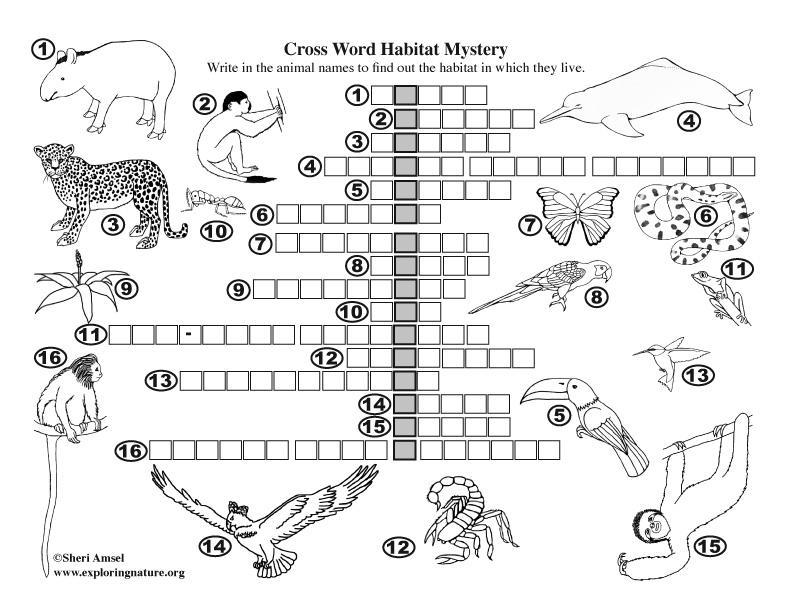 Habitat Mystery Crossword Puzzle (Amazon Rainforest