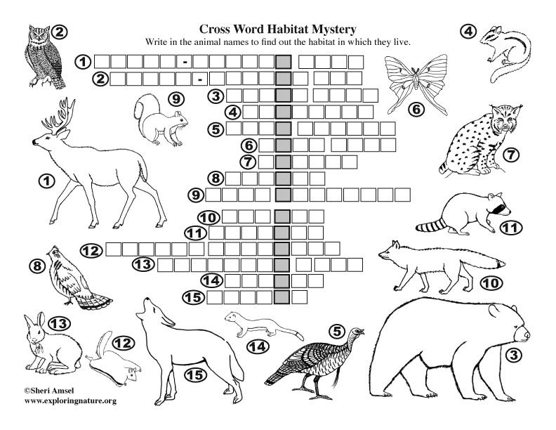 Habitat Mystery Crossword Puzzle Deciduous Forest