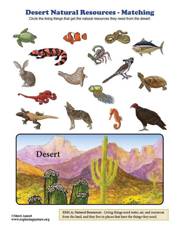 Desert Natural Resources - Matching