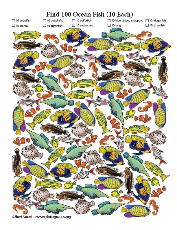 Find 100 Ocean Fish