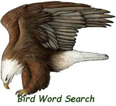 Wordsearch - Learning Bird Names