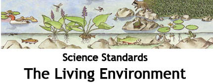 <b>Living Environment: External Traits</b>
