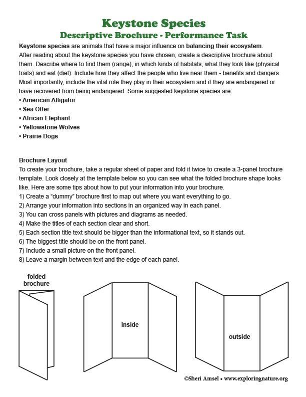 Keystone Species Descriptive Brochure - Performance Task