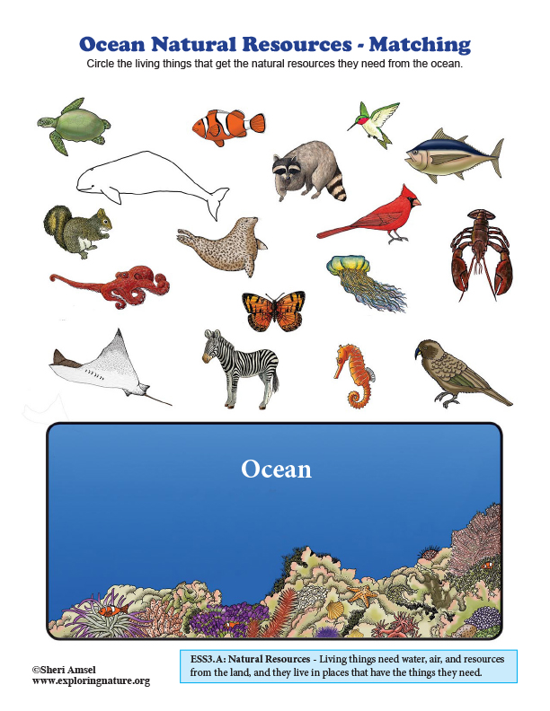 Ocean Natural Resources - Matching