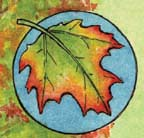 Fall Colors - Green Chlorophyll and Photosynthesis
